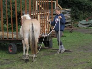 Annette og Stella leger med flank-rope 2006