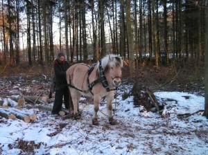 Annette og Stella i skoven 2006