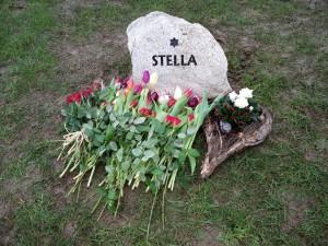 Stellas sten på agilitybanen, februar 2016