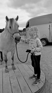 Hestelejr på hestebanen