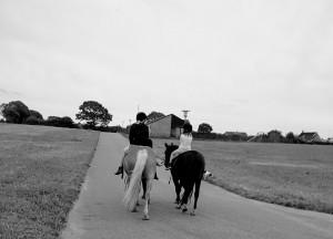 Hesteholdet på tur